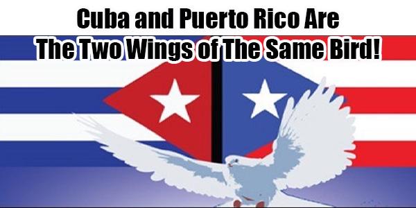 June 18 UN Decolonization Hearings on Puerto Rico